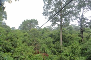 Siem Reap – Zipline – 1 Day Tour