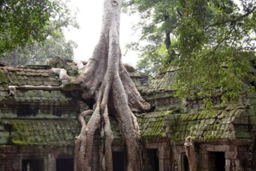 Siem Reap Highlight Tour – 3 Days